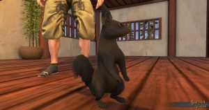 SotA_BlackSquirrelPet_view2-300x159.jpg