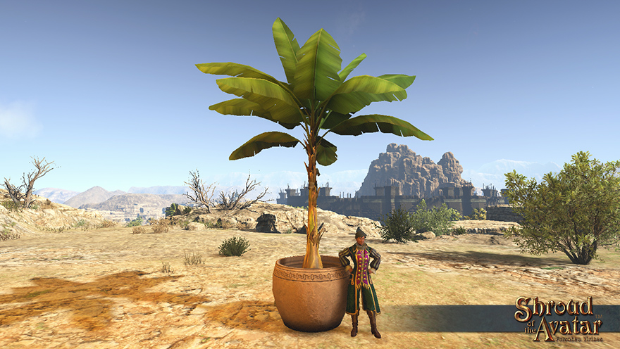 item_potted_giant_banana_plant.jpg