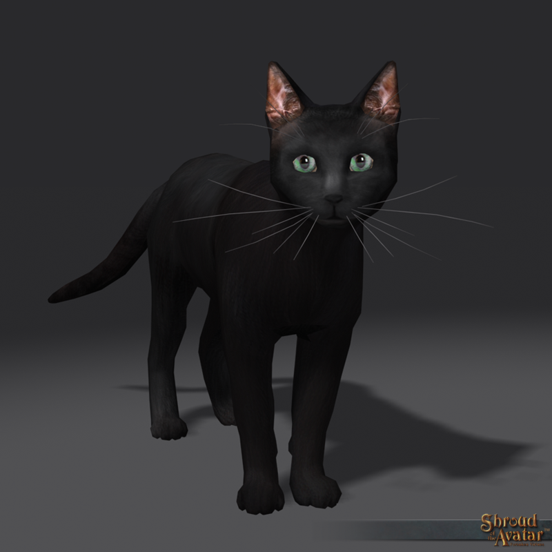 SotA_Black_Cat_Pet