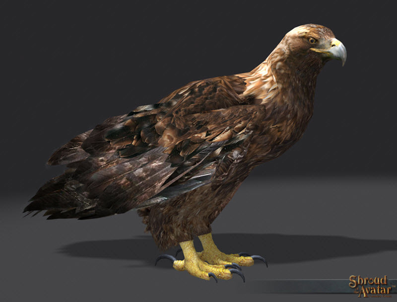 SotA_GoldenEagle_Pet_2