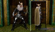 Viking Wearable Bundle