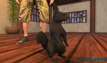 Black Squirrel Pet